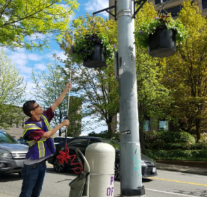 A man in a purple vest waters a flower basket hanging from a pole