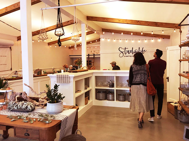 Interior of StudioLife shows plants and gifts on display
